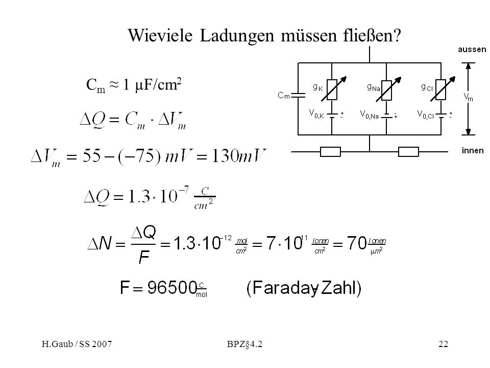 H.Gaub / SS 2007BPZ§4.222 Wieviele Ladungen müssen fließen? C m 1 µF/cm 2
