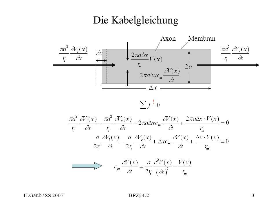 H.Gaub / SS 2007BPZ§4.23 Die Kabelgleichung ! AxonMembran