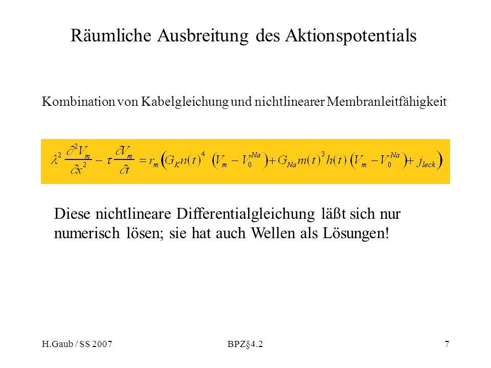 H.Gaub / SS 2007BPZ§4.27 Diese nichtlineare Differentialgleichung läßt sich nur numerisch lösen; sie hat auch Wellen als Lösungen! Räumliche Ausbreitu