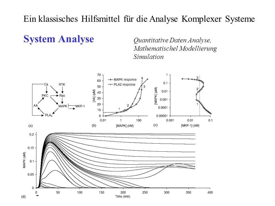 Ein klassisches Hilfsmittel für die Analyse Komplexer Systeme Quantitative Daten Analyse, Mathematischel Modellierung Simulation System Analyse