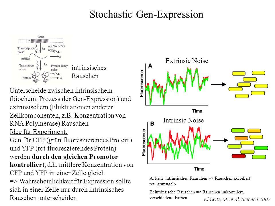 Unterscheide zwischen intrinsischem (biochem. Prozess der Gen-Expression) und extrinsischem (Fluktuationen anderer Zellkomponenten, z.B. Konzentration