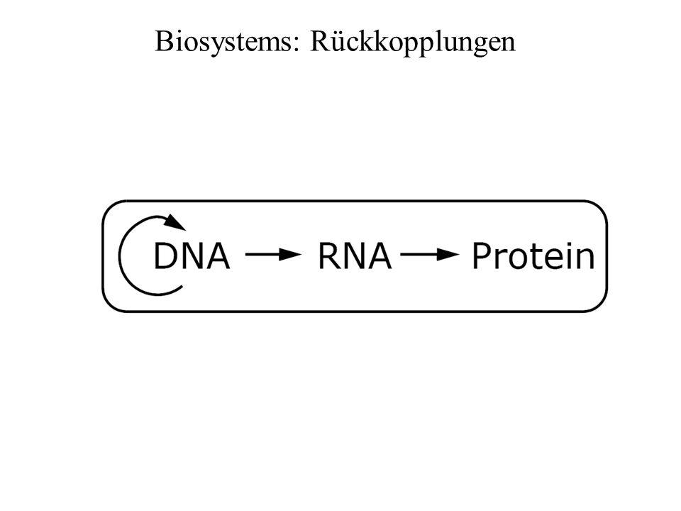 Regulation Cell-Cell Communication RNA Interferenz Protein-Wechselwirkung Reaktionsnetzwerke Organellen Epigenetics Promotoren, Inhibitoren Verstärkung DiffusionRauschen Kompartimente