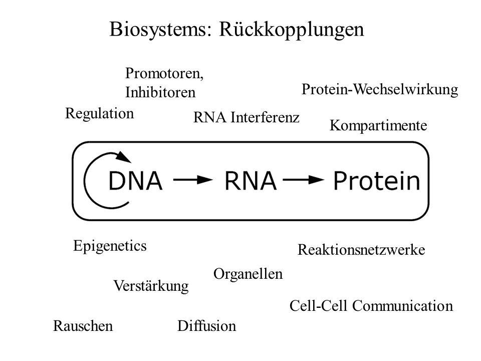 Regulation Cell-Cell Communication RNA Interferenz Protein-Wechselwirkung Reaktionsnetzwerke Organellen Epigenetics Promotoren, Inhibitoren Verstärkun