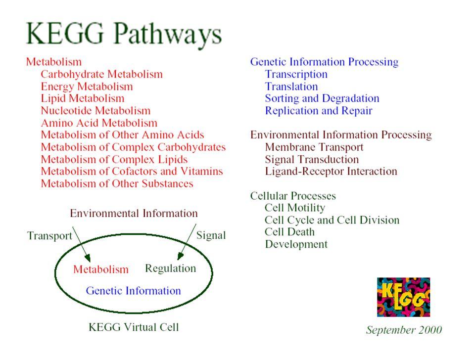 http://www.genome.jp/kegg/pathway.html#cellularhttp://www.genome.jp/kegg/pathway.html#cellular -> MCP, CheY