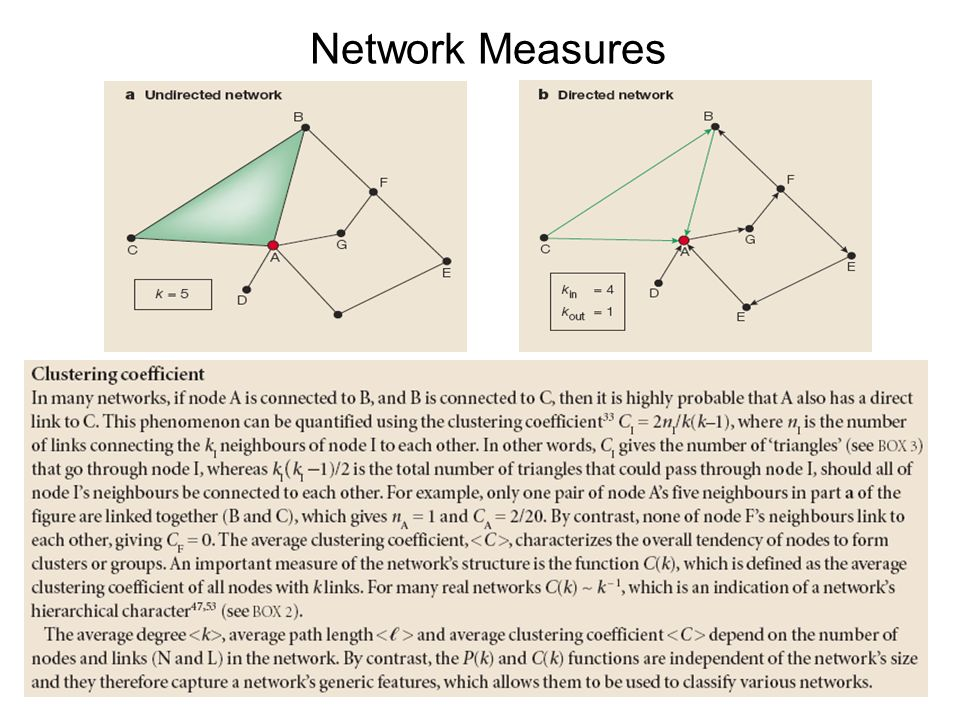 Network Types Random Scale-Free Hierarchical