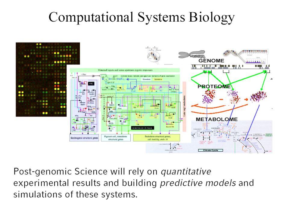 Nicht-Lineare Systeme können mehrere stationäre Zustände aufweisen: Diskriminative Schaltfunktion