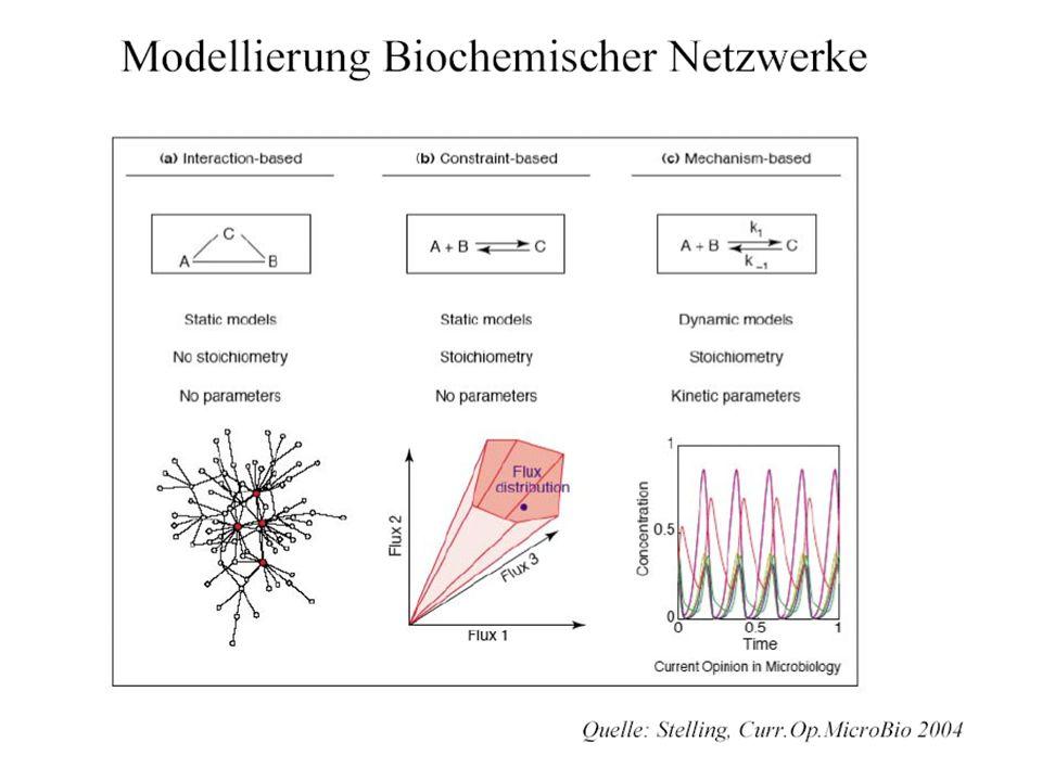 Relationships (Shiraishi-Savageau, 1992) Homogeneous 3D reactions -> pos.