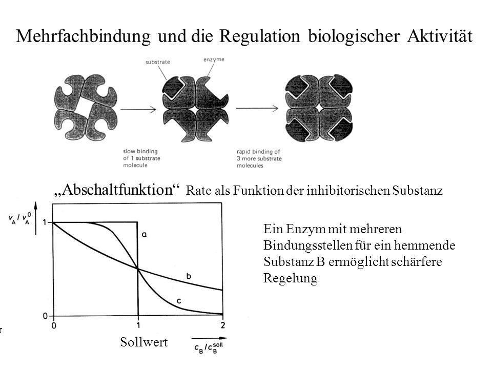 Mehrfachbindung und die Regulation biologischer Aktivität Ein Enzym mit mehreren Bindungsstellen für ein hemmende Substanz B ermöglicht schärfere Regelung Abschaltfunktion Rate als Funktion der inhibitorischen Substanz Sollwert