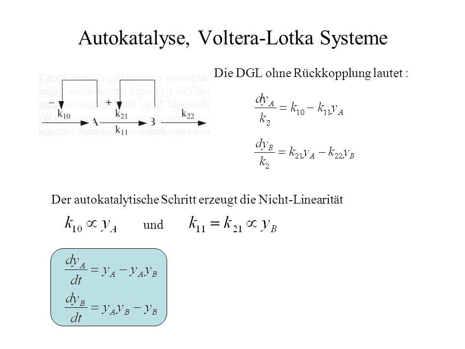 Autokatalyse, Voltera-Lotka Systeme Die DGL ohne Rückkopplung lautet : Der autokatalytische Schritt erzeugt die Nicht-Linearität und