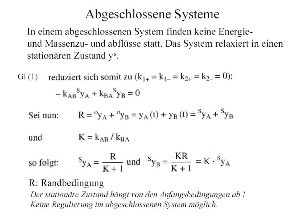 S-Systeme Produktansatz für die Zu- und Abflüsse V i + and V i -.