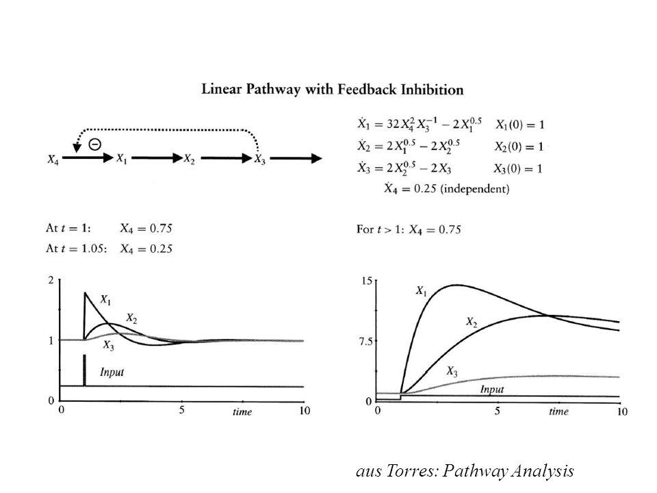 aus Torres: Pathway Analysis