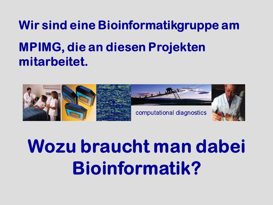 Wir sind eine Bioinformatikgruppe am MPIMG, die an diesen Projekten mitarbeitet. Wozu braucht man dabei Bioinformatik?