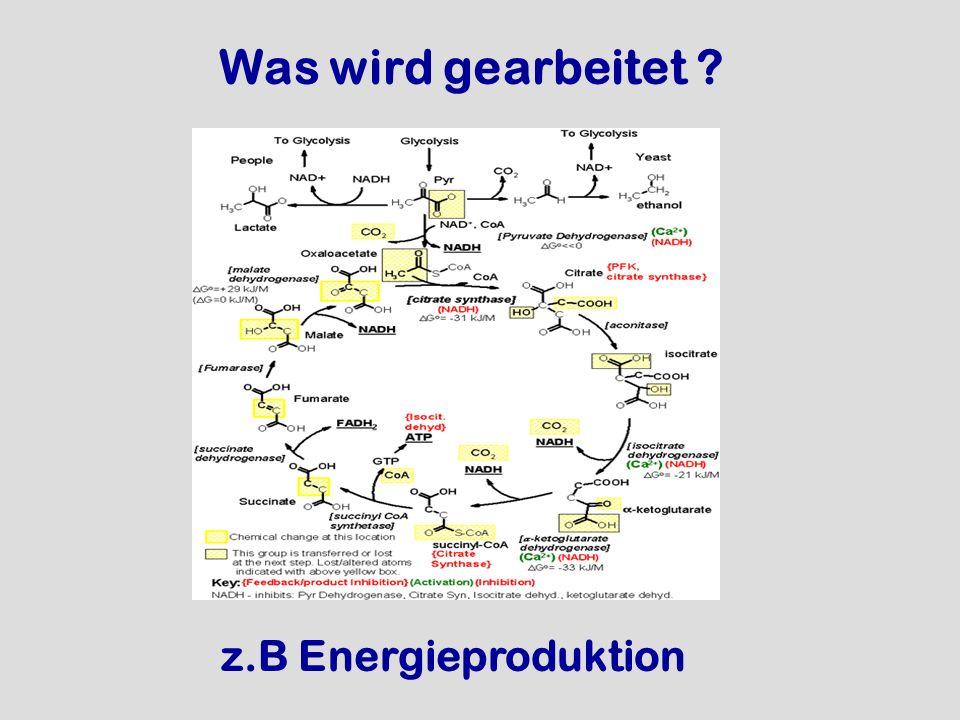 Was wird gearbeitet ? z.B Energieproduktion