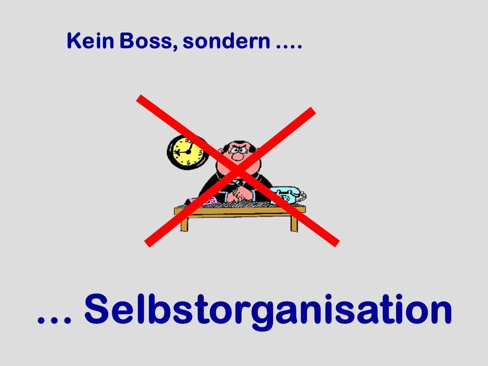 Kein Boss, sondern....... Selbstorganisation