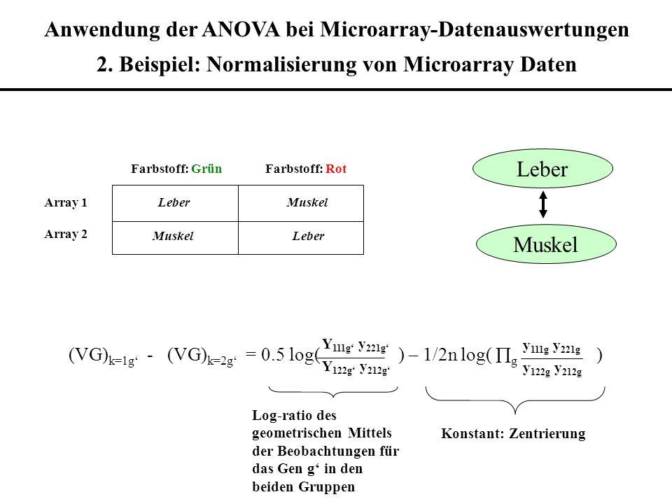 Anwendung der ANOVA bei Microarray-Datenauswertungen 2. Beispiel: Normalisierung von Microarray Daten Farbstoff: GrünFarbstoff: Rot Array 1 Array 2 Le
