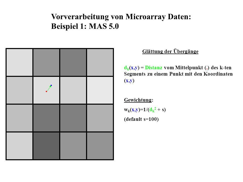 d k (x,y) = Distanz vom Mittelpunkt (.) des k-ten Segments zu einem Punkt mit den Koordinaten (x,y) Gewichtung: w k (x,y)=1/(d k 2 + s) (default s=100