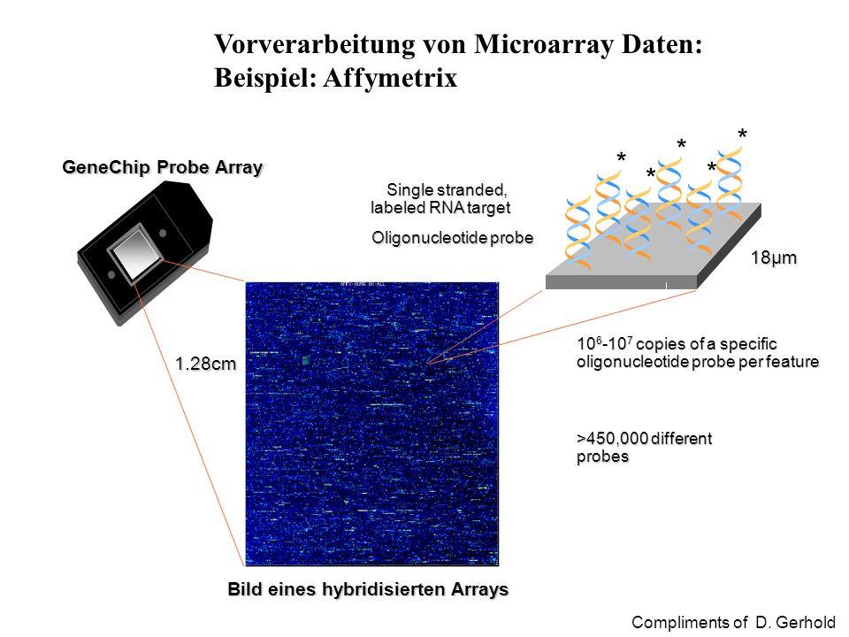 Vorverarbeitung von Microarray Daten: Beispiel: Affymetrix 18µm 10 6 -10 7 copies of a specific oligonucleotide probe per feature Bild eines hybridisi