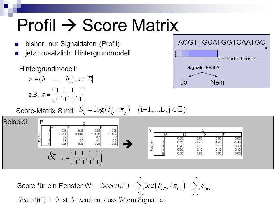 Profil Score Matrix bisher: nur Signaldaten (Profil) jetzt zusätzlich: Hintergrundmodell ACGTTGCATGGTCAATGC gleitendes Fenster Signal(TFBS).