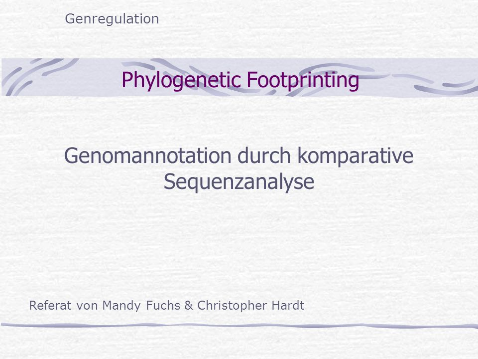 Phylogenetic Footprinting Genomannotation durch komparative Sequenzanalyse Genregulation Referat von Mandy Fuchs & Christopher Hardt
