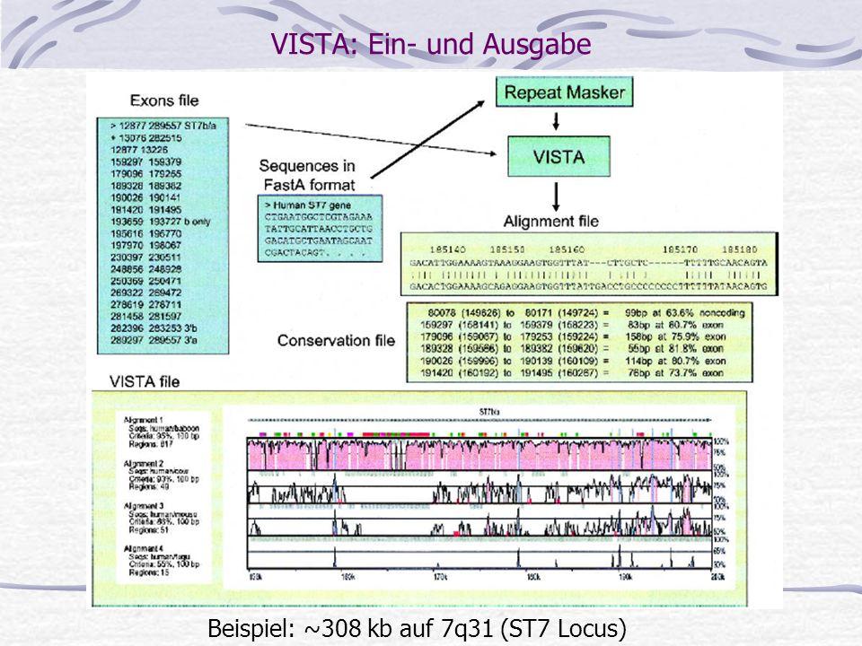 VISTA (http://www-gsd.lbl.gov/vista) Verwendet AVID für globale Alignments Maximal-Match-Finding mit Suffix Trees Ankerauswahl: Menge der nicht überla