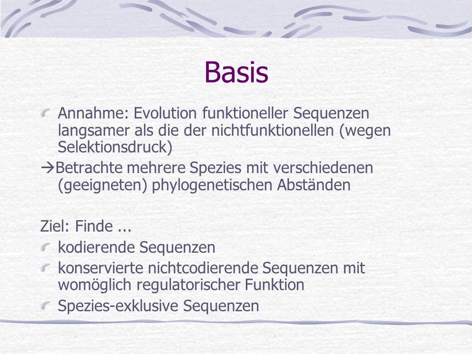 Nach der Sequenzierung die Annotation Immer mehr Genome sequenziert Nächster Schritt: komplette und korrekte Annotation (noch sehr lückenhaft) Suche n