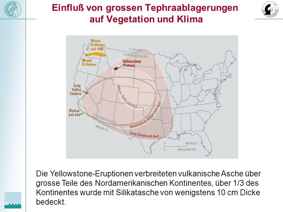 Einfluß von grossen Tephraablagerungen auf Vegetation und Klima Die Yellowstone-Eruptionen verbreiteten vulkanische Asche über grosse Teile des Nordam