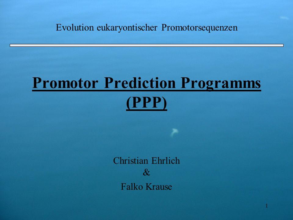 1 Promotor Prediction Programms (PPP) Christian Ehrlich & Falko Krause Evolution eukaryontischer Promotorsequenzen