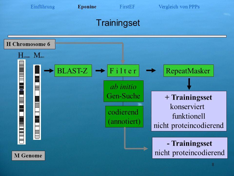 8 Trainingset H Chromosome 6 H uman M aus BLAST-ZF i l t e r ab initio Gen-Suche codierend (annotiert) RepeatMasker M Genome + Trainingsset konservier