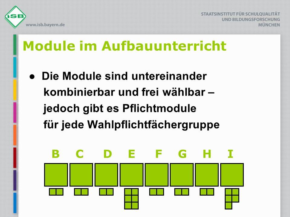 Module im Aufbauunterricht Die Module sind untereinander kombinierbar und frei wählbar – jedoch gibt es Pflichtmodule für jede Wahlpflichtfächergruppe