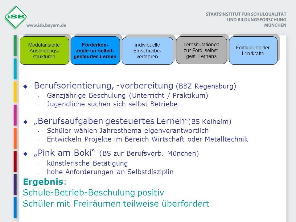 Berufsorientierung, -vorbereitung (BBZ Regensburg) - Ganzjährige Beschulung (Unterricht / Praktikum) - Jugendliche suchen sich selbst Betriebe Berufsa