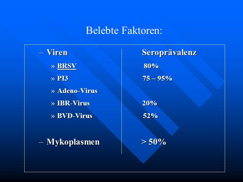 –Viren Seroprävalenz »BRSV 80% »PI3 75 – 95% »Adeno-Virus »IBR-Virus 20% »BVD-Virus 52% –Mykoplasmen > 50% Belebte Faktoren: