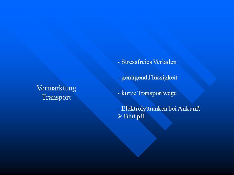 Vermarktung Transport - Stressfreies Verladen - genügend Flüssigkeit - kurze Transportwege - Elektrolyttränken bei Ankunft Blut pH