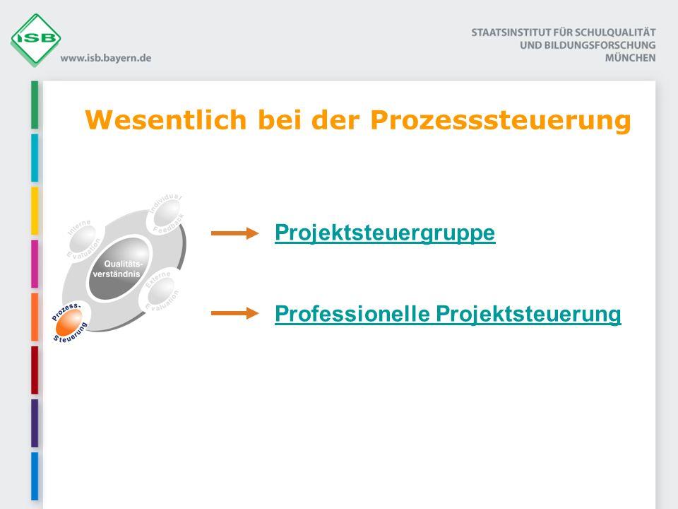 Wesentlich bei der Prozesssteuerung Projektsteuergruppe Professionelle ProjektsteuerungProfessionelle Projektsteuerung