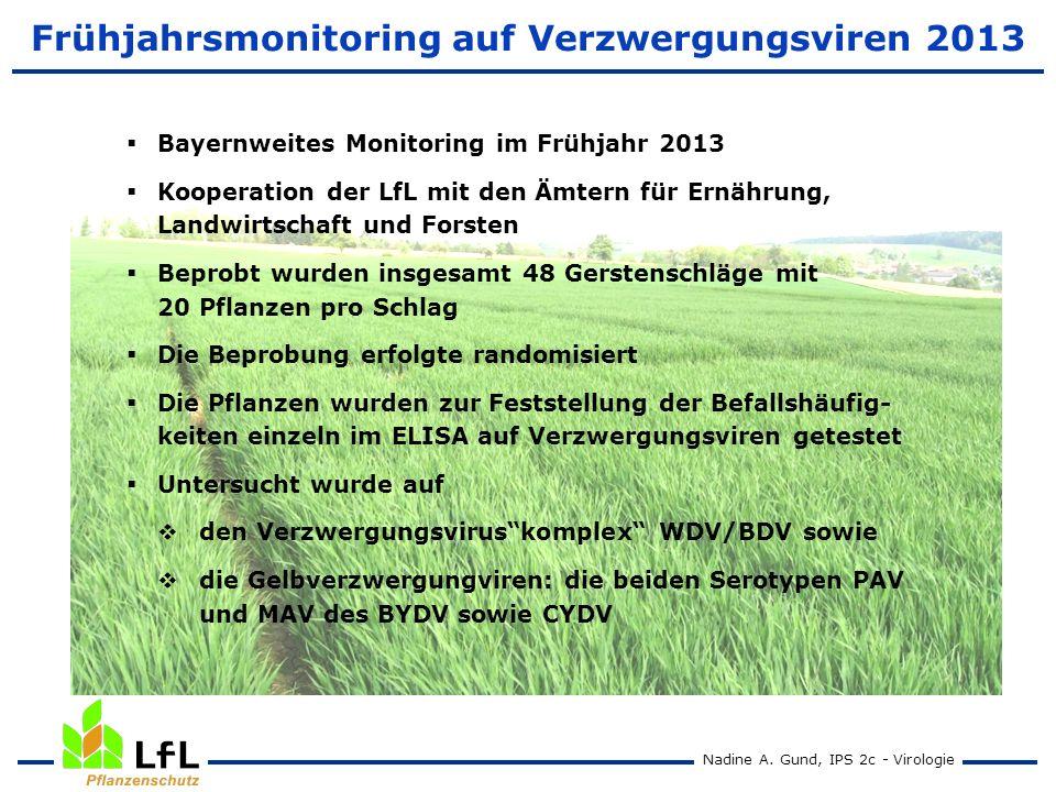 Nadine A. Gund, IPS 2c - Virologie Frühjahrsmonitoring auf Verzwergungsviren 2013 Bayernweites Monitoring im Frühjahr 2013 Kooperation der LfL mit den