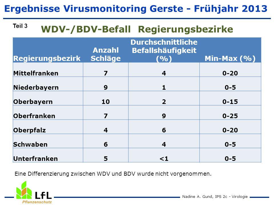 WDV-/BDV-Befall Regierungsbezirke Nadine A. Gund, IPS 2c - Virologie Regierungsbezirk Anzahl Schläge Durchschnittliche Befallshäufigkeit (%)Min-Max (%