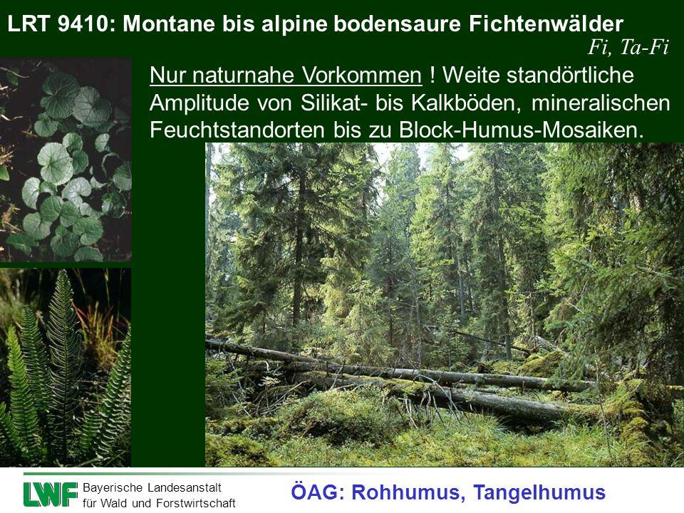 Bayerische Landesanstalt für Wald und Forstwirtschaft LRT 9410: Montane bis alpine bodensaure Fichtenwälder Nur naturnahe Vorkommen ! Weite standörtli
