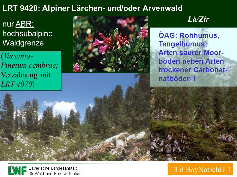 Bayerische Landesanstalt für Wald und Forstwirtschaft LRT 9420: Alpiner Lärchen- und/oder Arvenwald nur ABR; hochsubalpine Waldgrenze (Vaccinio- Pinet