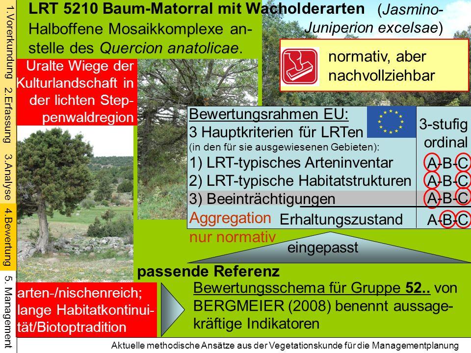 Aktuelle methodische Ansätze aus der Vegetationskunde für die Managementplanung LRT 5210 Baum-Matorral mit Wacholderarten Halboffene Mosaikkomplexe an