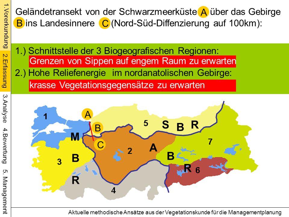 UEi/Bu Ta / Kie Bu-Ta TrEi Schwarzmeerregion Anatolische Region Ariditäts-/Kontinenalitätszunahme Bu C Kast Bu (MBR) Aktuelle methodische Ansätze aus der Vegetationskunde für die Managementplanung B 1.Vorerkundung 4.Bewertung 5.