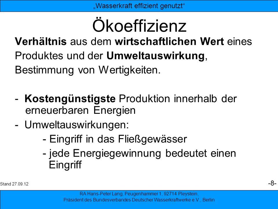 9 Ökoeffizienz - Gegenmaßnahmen: - Schutz der Fischpopulation - Rechen vor den Turbinen - Fischwanderhilfen - Abgabe von Restwasser - Verstärkte Forschung nach verträglicheren Turbinentechniken.