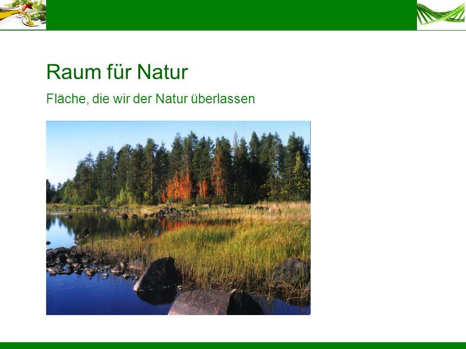 BeikräuterDiversität auf der NutzflächeFläche, die wir der Natur überlassen Raum für Natur