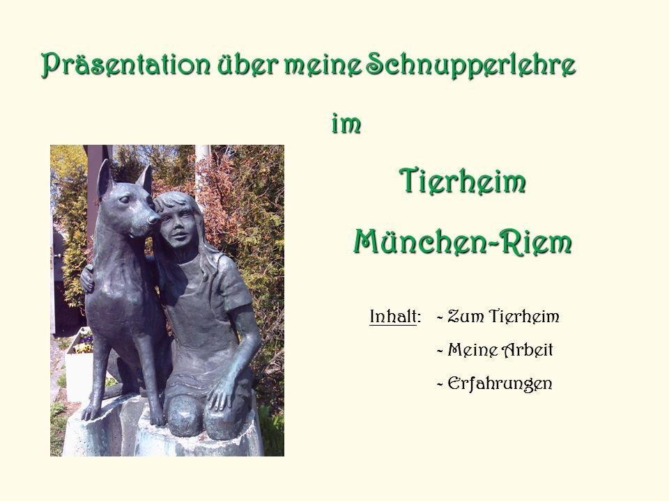 Präsentation über meine Schnupperlehre Inhalt: - Zum Tierheim - Meine Arbeit - Erfahrungen im TierheimMünchen-Riem
