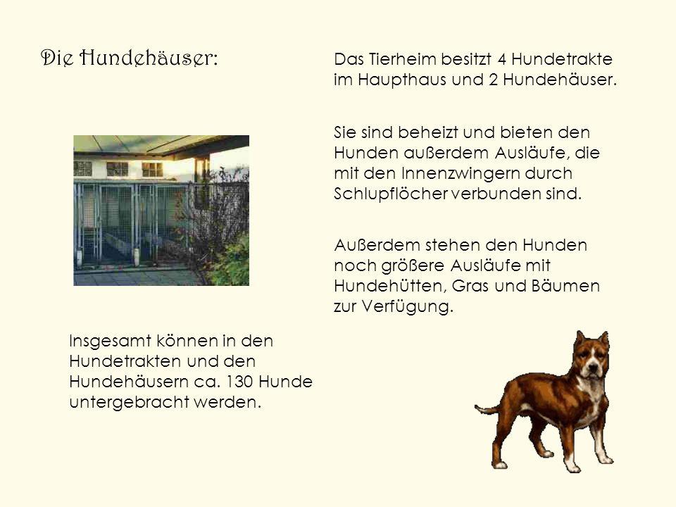 Die Hundehäuser: Das Tierheim besitzt 4 Hundetrakte im Haupthaus und 2 Hundehäuser. Sie sind beheizt und bieten den Hunden außerdem Ausläufe, die mit