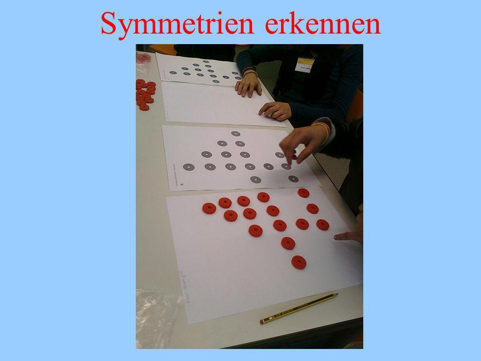 Symmetrien erkennen