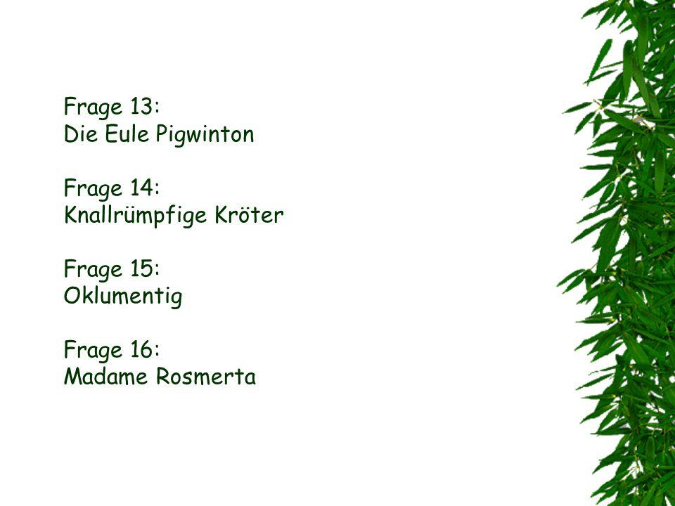 Frage 10: Belatrixe Lestrange Frage 11: Fluffi, Würgepflanze, Schlüssel, Troll ( schon erledigt ), Schach, Getränke, Voldemore Frage 12: Er musste Lok