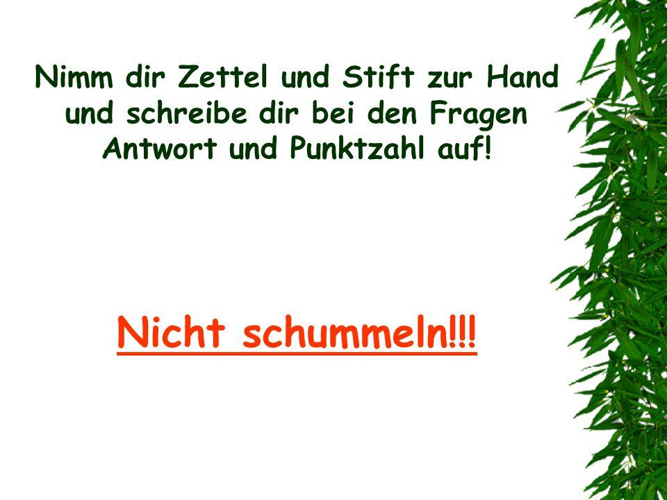 ACHTUNG, NUR FÜR HARRY POTTER FANS!!!! GLEICH KOMMEN DIE FRAGEN