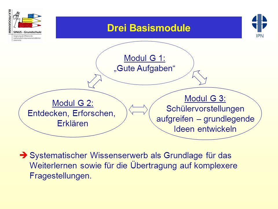 Drei Basismodule Systematischer Wissenserwerb als Grundlage für das Weiterlernen sowie für die Übertragung auf komplexere Fragestellungen.