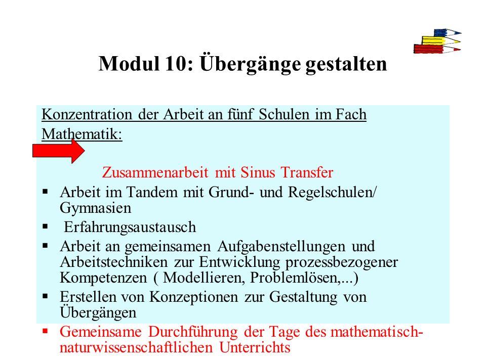 Modul 10: Übergänge gestalten Konzentration der Arbeit an fünf Schulen im Fach Mathematik: Zusammenarbeit mit Sinus Transfer Arbeit im Tandem mit Grun