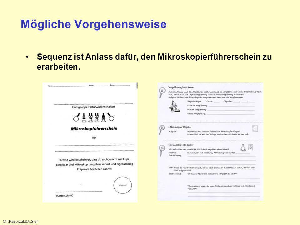 Mögliche Vorgehensweise Sequenz ist Anlass dafür, den Mikroskopierführerschein zu erarbeiten. ©T.Kasprzak&A.Steif