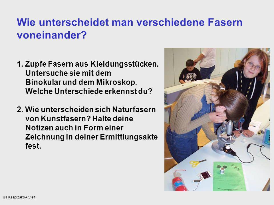 Möglichkeiten der Kompetenzerweiterung/Kompetenzanwendung innerhalb des Rahmenthemas durch Vernetzung mit anderen Rahmenthemen ©T.Kasprzak&A.Steif